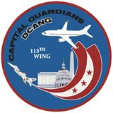113th Wing D.C. Air National Guard patch